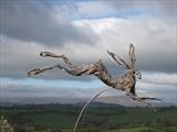 Leaping Hare by Penny Hardy, Sculpture, Aluminium wire, epoxy resin, stainless steel