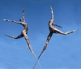 Spirits in the Sky by Penny Hardy, Sculpture, Aluminium wire and resin